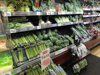 「オーラパックラクポスブロッコリー」を導入されて(中部地区 スーパーマーケット様)_2