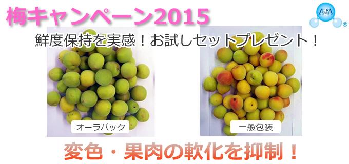 変色・果肉の軟化を抑制