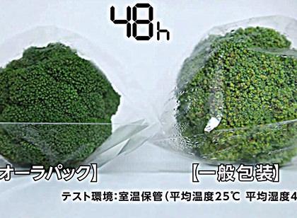 ブロッコリー鮮度比較/オーラパック概要(ダイジェスト)
