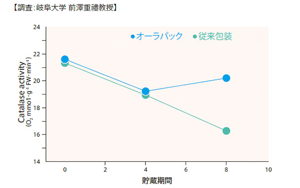 オーラパックと従来包装貯蔵期間比較表