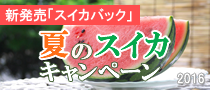 watermelon_bn