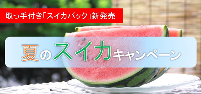 watermelon_visual