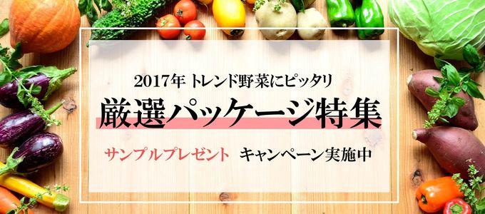 厳選!トレンド野菜キャンペーン2017