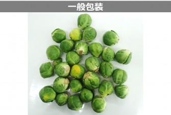 芽キャベツ試験最終日の画像2