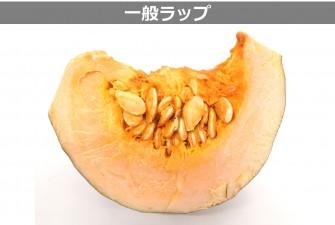 カットかぼちゃ試験最終日の画像2