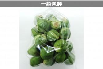 芽キャベツ試験初日の画像2