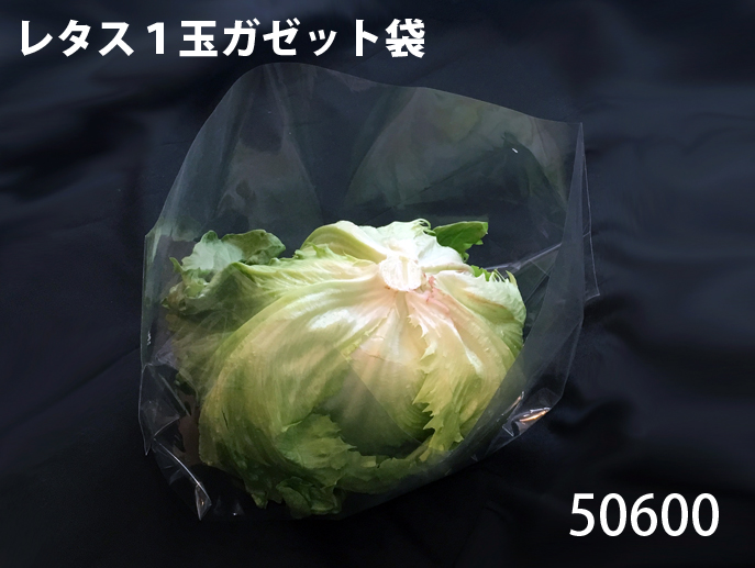 http://bellegreenwise.co.jp/wordpress/wp-content/uploads/2018/05/50600.jpg