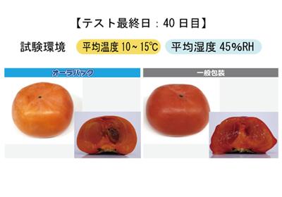 柿 変色・軟化の抑制