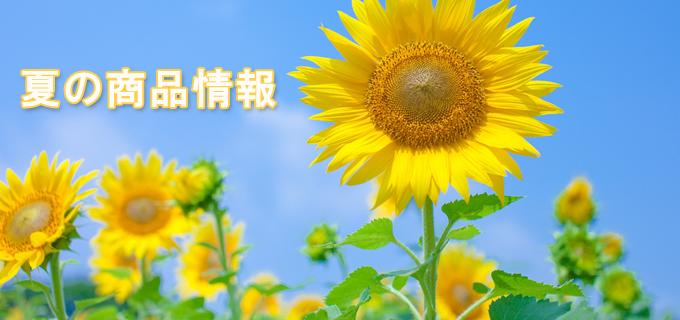 2015夏の商品情報