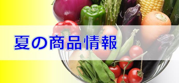 2016夏の商品情報