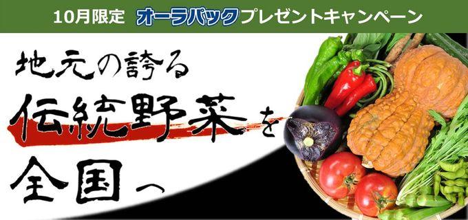 オーラパック伝統野菜キャンペーン