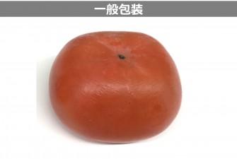 柿試験最終日の画像2