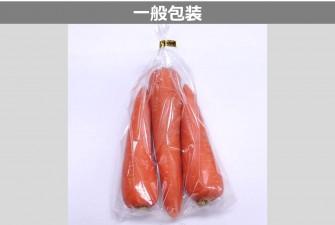 にんじん試験初日の画像2
