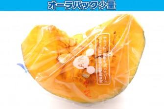 カットかぼちゃ試験初日の画像1