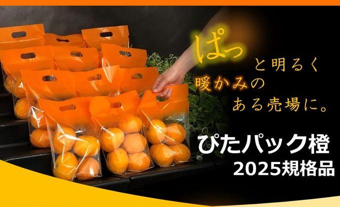 ぴたパック橙2025規格品