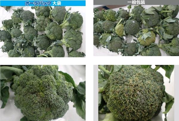 broccori