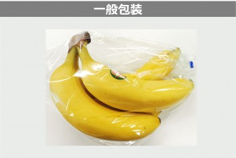 バナナ試験初日の画像2
