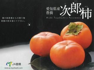 「オーラパック柿別注品」を導入されて(豊橋市 産業部 農業企画課 様)_1