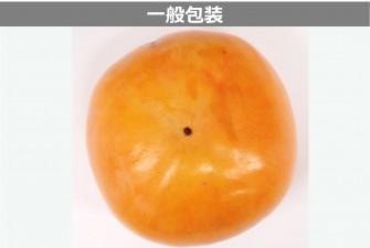 柿試験初日の画像2