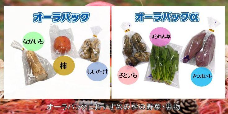 オーラパックにおすすめの秋の野菜・果物