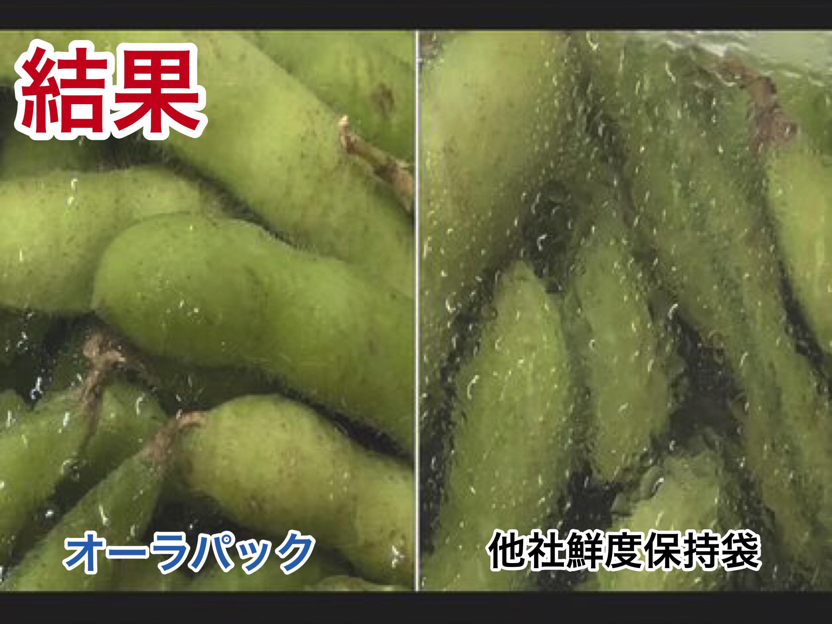 オーラパック 枝豆        鮮度比較