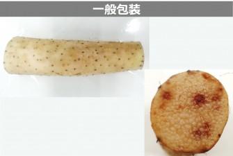 長芋(オーラパッククリア)試験最終日の画像2