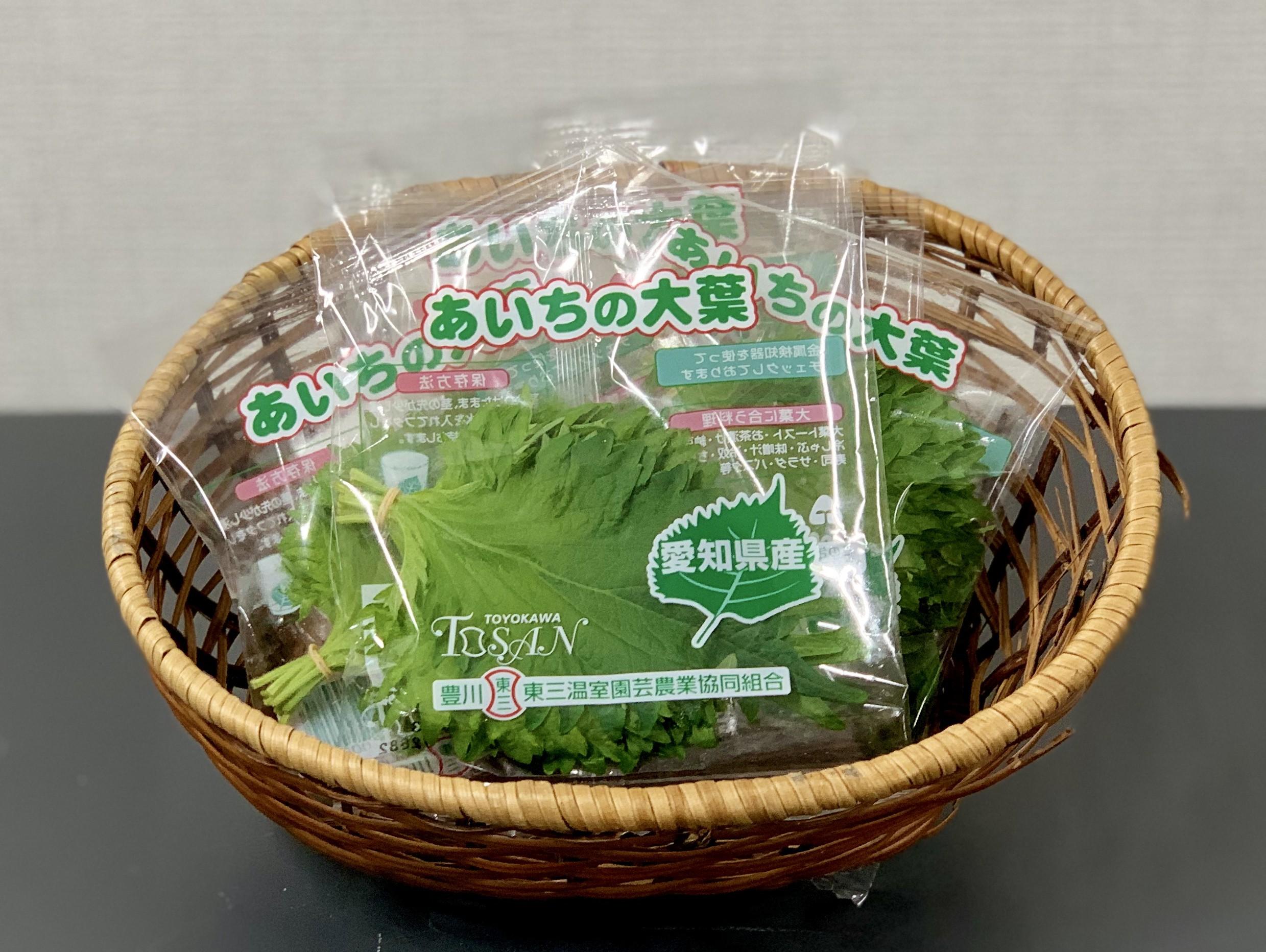「オーラパック別注品」を導入されて(東三温室園芸農業協同組合 様)