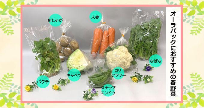 オーラパックにおすすめの春野菜