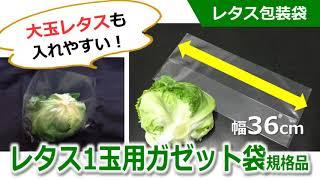 【レタス包装袋】         レタス1玉用ガゼット袋の使い方