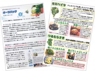 「オーラパック規格品・オーラパック大袋規格品」を導入されて(とりのさと農園 様)_2
