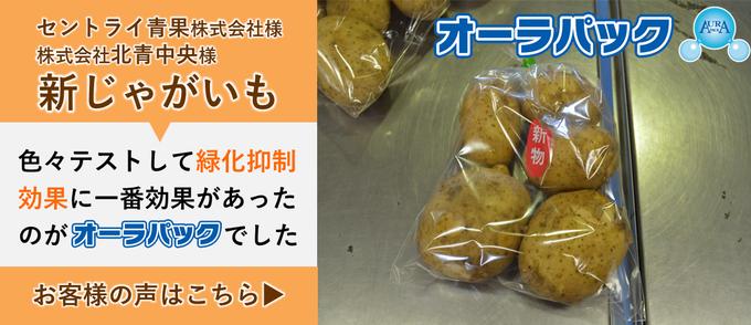 saiyojirei