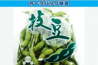 枝豆(茶豆)試験初日の画像1
