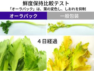 「オーラパック別注品」を導入されて(愛知・静岡県 スーパーマーケット様)_2