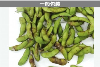 枝豆(茶豆)試験最終日の画像2